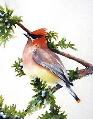 Cedar Waxwings Painting - Cedar Waxwing by Brenda Beck Fisher