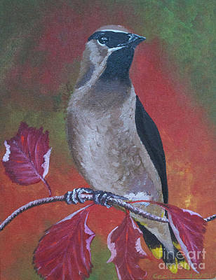 Painting - Cedar Waxwing by Cecilia Stevens