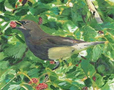 Cedar Waxwing Eating Mulberry Art Print