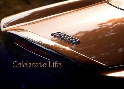 Jerry Sodorff Royalty-Free and Rights-Managed Images - Celebrate Life 21205 by Jerry Sodorff