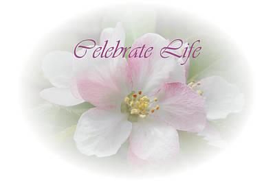 Photograph - Celebrate Life by Judy Hall-Folde