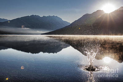 Sun Photograph - Celebrate by Scotts Scapes