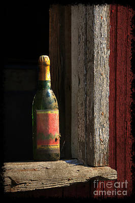Photograph - Celebrations Past by Lois Bryan