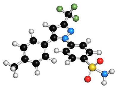 Celecoxib Anti-inflammatory Drug Molecule Art Print by Molekuul