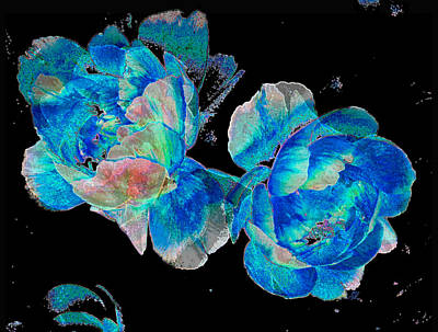Photograph - Celestial Blooms by Stephanie Grant