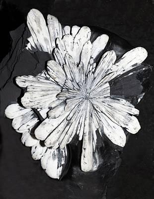 Crystalline Photograph - Celestine II by Dirk Wiersma