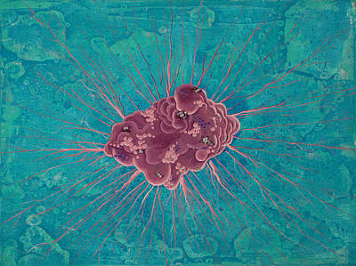 Education Painting - Cell No.15 by Angela Canada-Hopkins