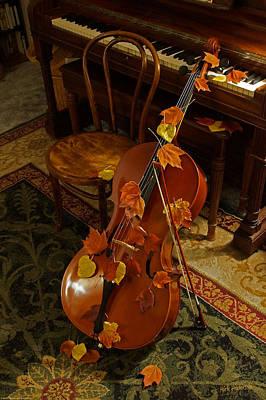 Cello Autumn 1 Art Print by Mick Anderson