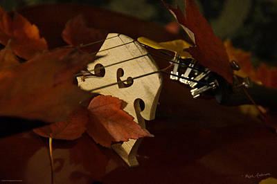 Photograph - Cello Autumn 3 by Mick Anderson