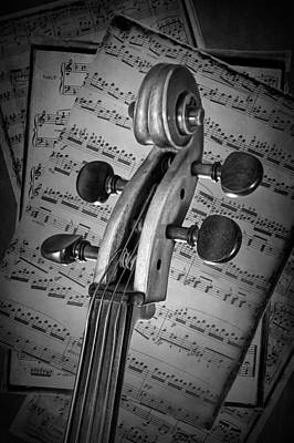 Photograph - Cello Classic Art by Randall Nyhof