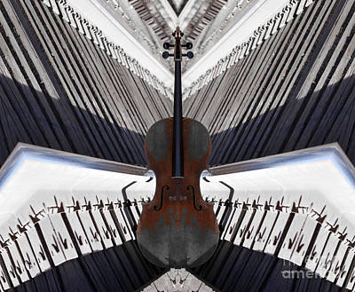 Cello Photograph - Cello Rhapsody  by Steven Digman