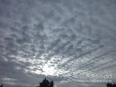 Photograph - Cellulitic Sky Dimples by Dianne  Connolly