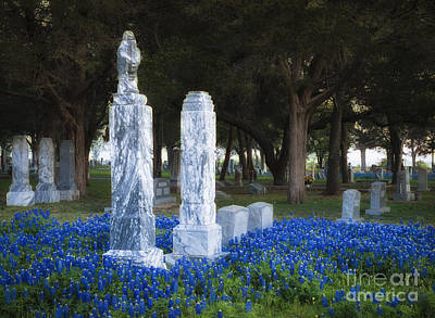 Photograph - Cemetery Bluebonnets by Richard Mason
