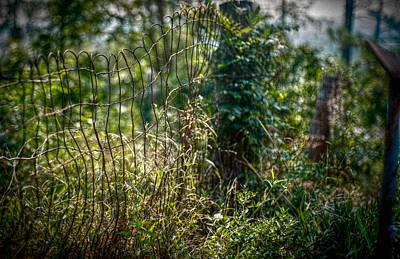 Medium Format Film Digital Art - Cemetery Fence On Film by Linda Unger