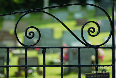 Field Photograph - Cemetery Gate by Amy Cicconi