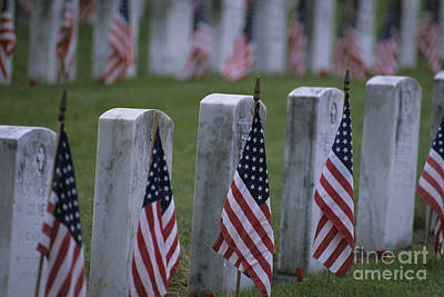 Photograph - Cemetery Honoring Our Soldiers American Flags by Jim Corwin