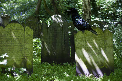Mortal Photograph - Cemetery With Ancient Gravestones And Black Crow  by Georgia Fowler