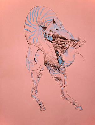 Anatomy Drawing - Centaur by Rachel Hoffman