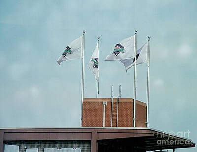 Citizens Bank Park Photograph - Center Field Flags by Terry Weaver