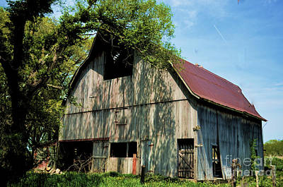 Photograph - Central Illinois Discarded Barn by Luther Fine Art
