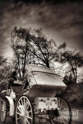 Photograph - Central Park Carriage Ride 2 - Antique Appeal by Miriam Danar