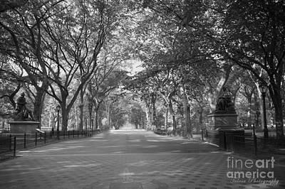 Wall Art - Photograph - Central Park by Christine Mlynarchuk