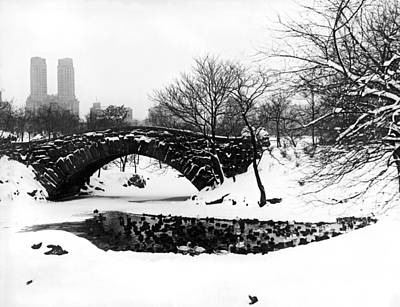 Bare Trees Photograph - Central Park Duck Pond by Underwood Archives