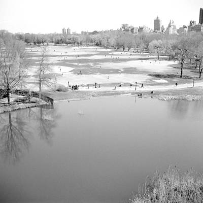 Photograph - Central Park Great Lawn by Dave Beckerman