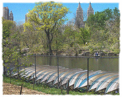 Park Scene Digital Art - Central Park In May 8 by Muriel Levison Goodwin