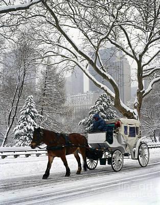 Central Park In Snowfall Art Print