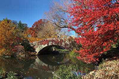 Print featuring the photograph Central Park In The Fall-1 by Steven Spak