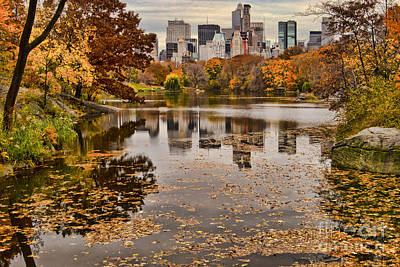 Central Park In The Fall New York City Art Print