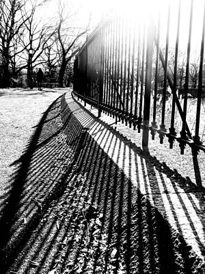Central Park In The Winter Sun Art Print by Jon Woodhams