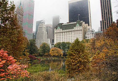 Central Park Art Print by June Marie Sobrito