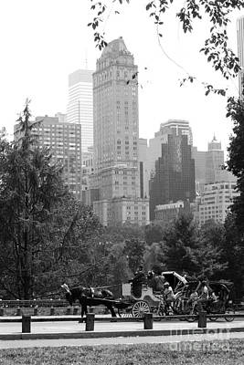 Central Park Art Print by Kristi Jacobsen