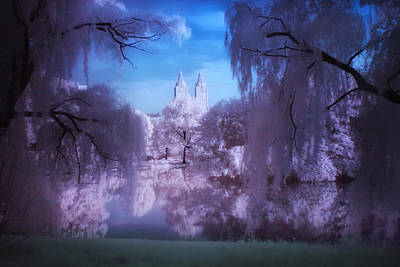 Photograph - Central Park Lake Willows Color by Dave Beckerman