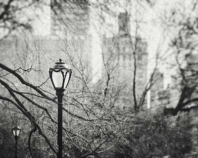 Central Park Lamppost In New York City Art Print by Lisa Russo