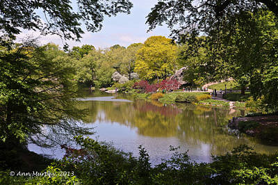 Photograph - Central Park Landscape by Ann Murphy