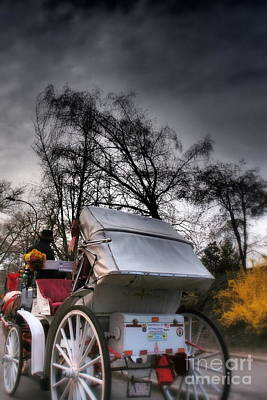 Photograph - Central Park New York - Romantic Carriage Ride 1 by Miriam Danar