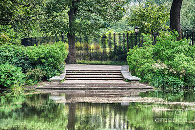 Photograph - Central Park Serenity Iv by Ray Warren