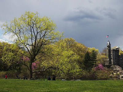 Photograph - Central Park Spring Greens by Cornelis Verwaal