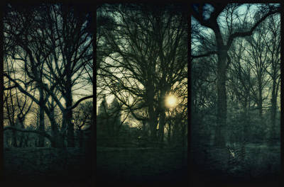 Photograph - Central Park Triptych IIi by Marianne Campolongo