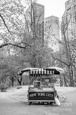 Hot Dogs Photograph - Central Park Vendor by Edward Fielding