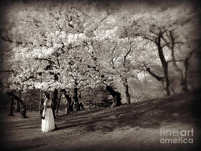 Photograph - Central Park Wedding - Antique Appeal by Miriam Danar