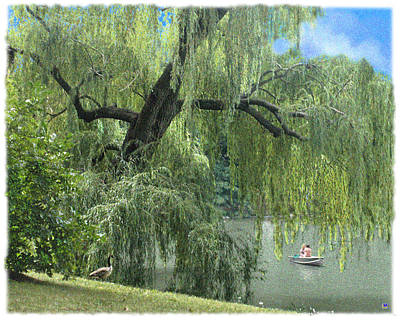 Central Park Weeping Willow And Friends Art Print by Muriel Levison Goodwin