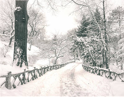 Central Park Winter Landscape Print by Vivienne Gucwa