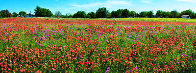 Photograph - Central Texas Wildflower Wonderland Panorama by Lynn Bauer