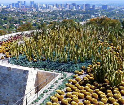 Photograph - Century City And Cactus by Jeff Lowe