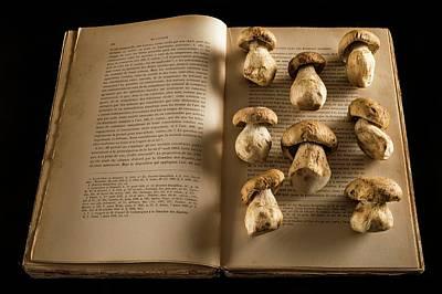 Ceps Mushrooms On An Open Book Print by Aberration Films Ltd