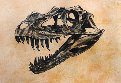 Dinosaur Wall Art - Painting - Ceratosaurus Skull by Harm  Plat